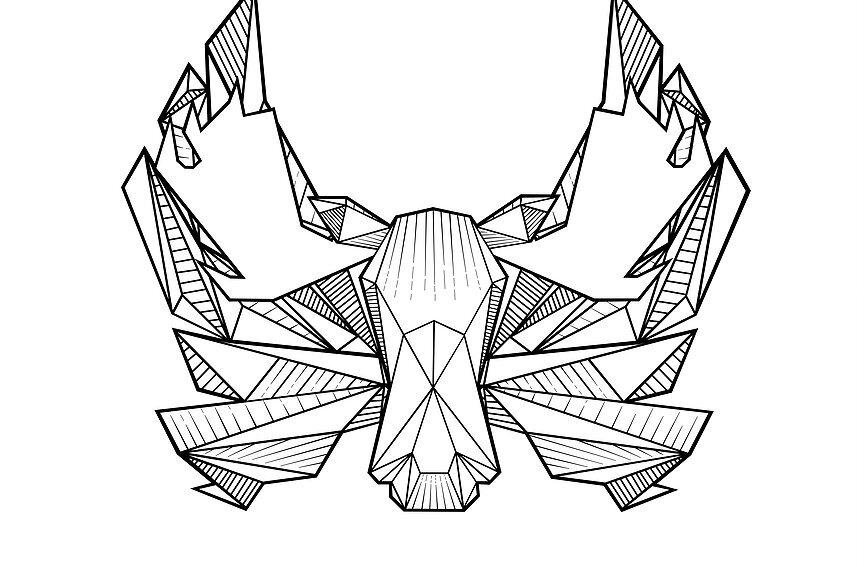 The DuluCon logo. Courtesy of DuluCon