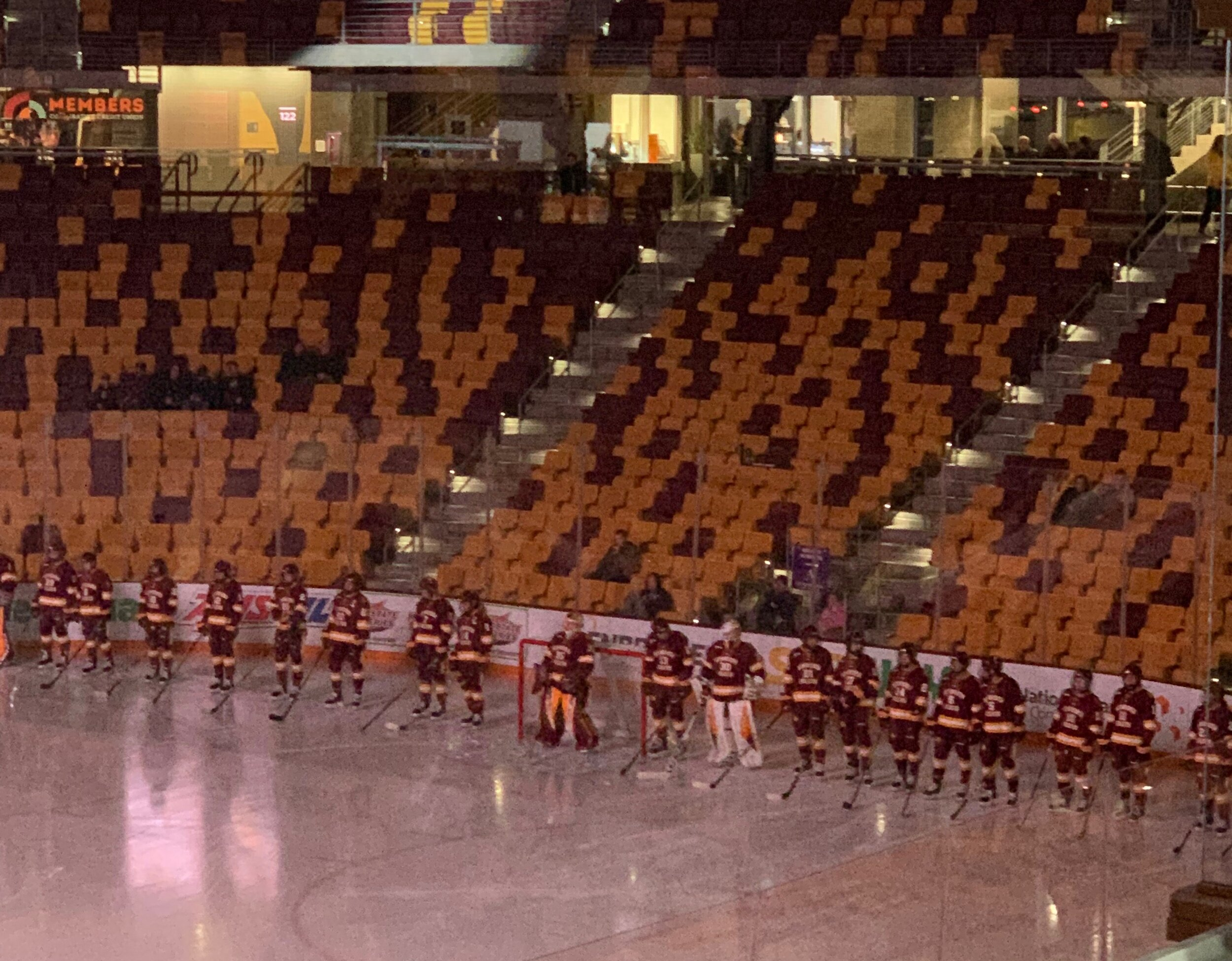 The UMD women's hockey team lines up pre-game for introduction of the starting line up. (Photo: Brett Sharp)