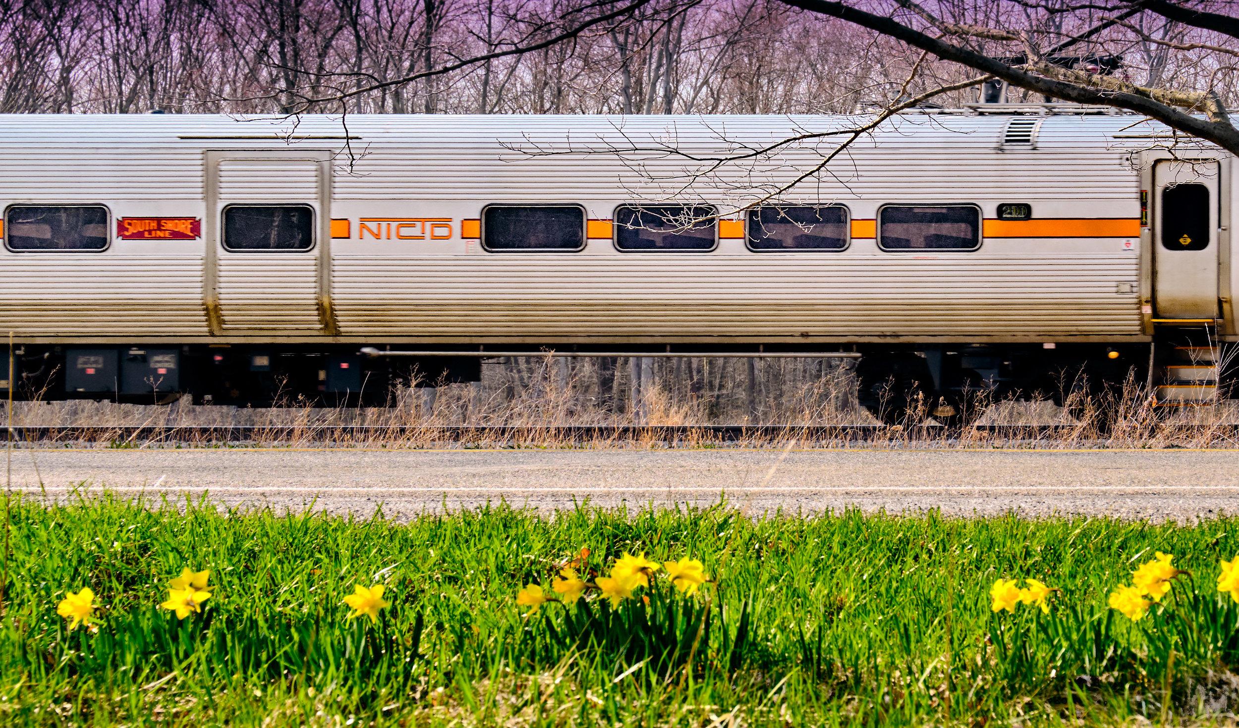 South Shore Spring-310.jpg
