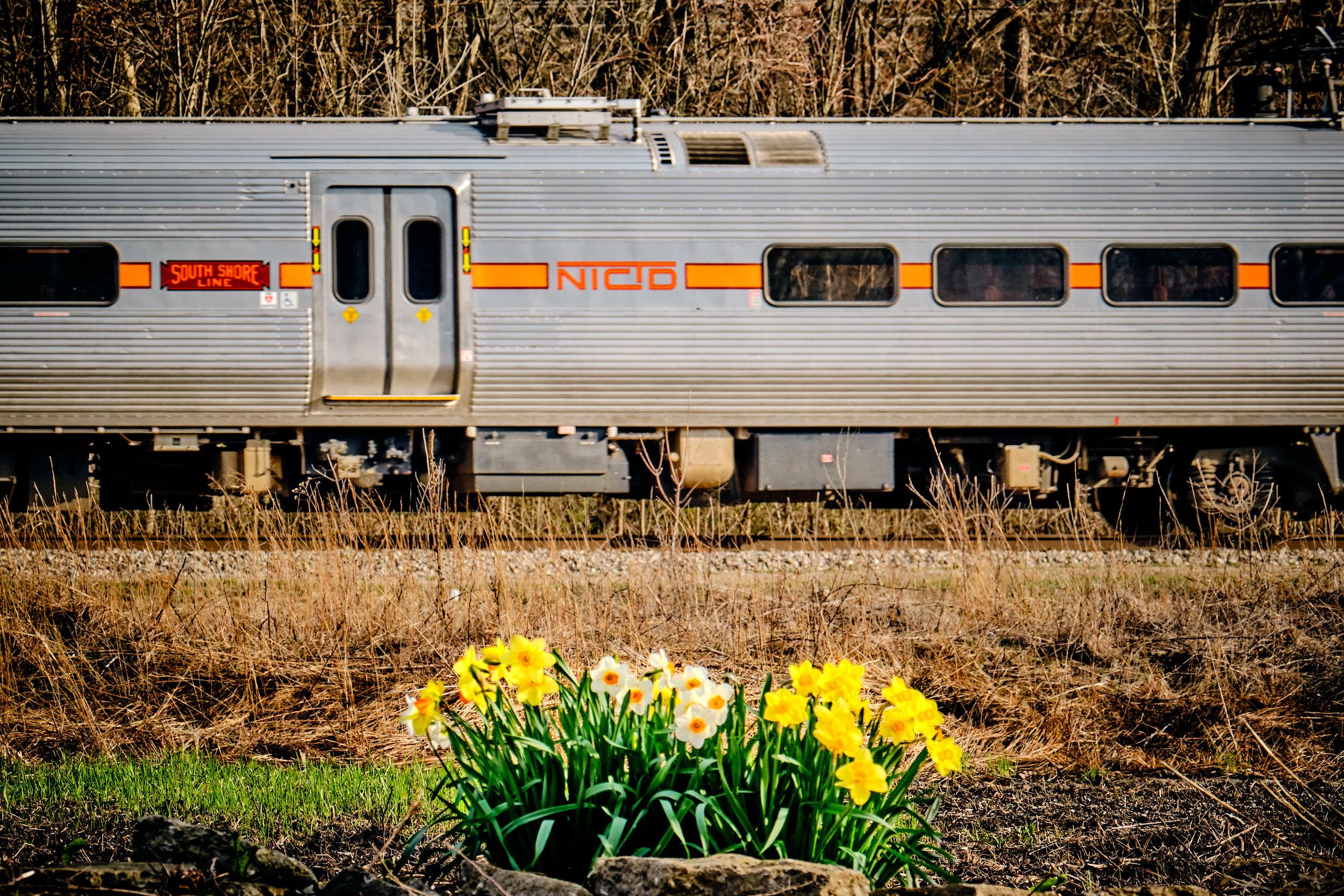 South Shore Spring-539.jpg