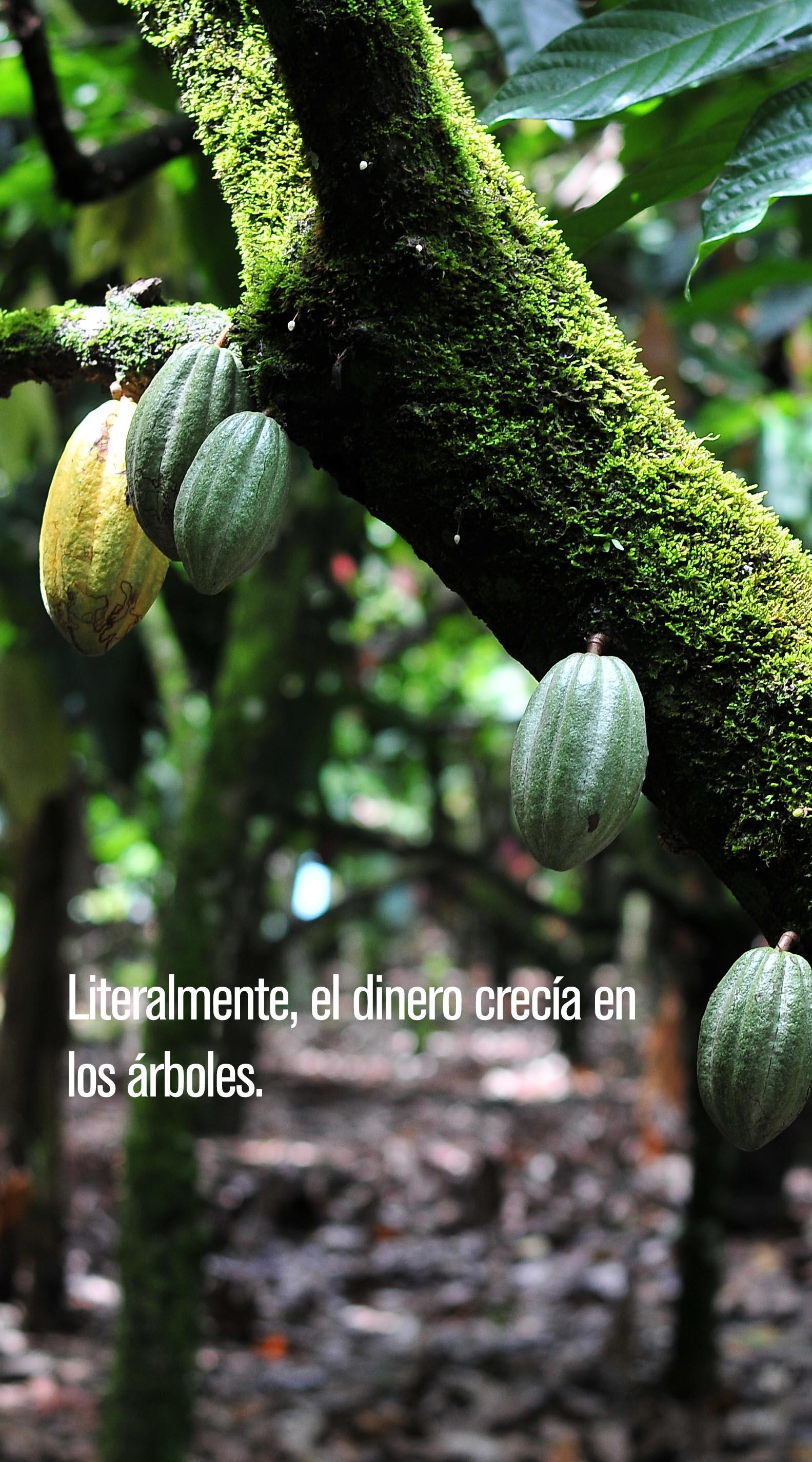 #Cuentosdechocolate #FFJMag