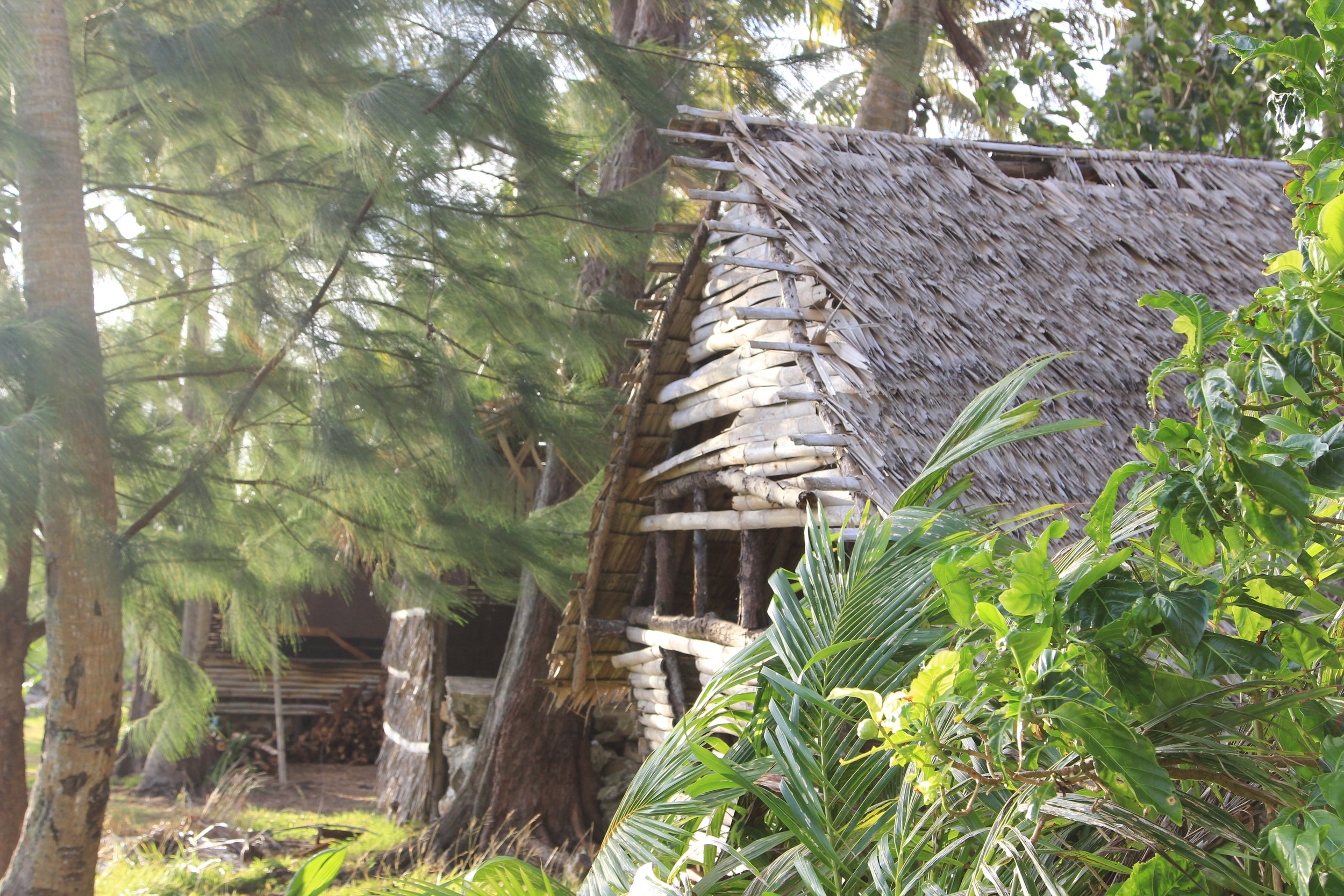 Hut at Gef Pa'go Cultural Village, Inarajan