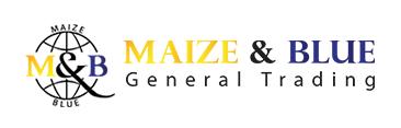 logo_maizeandblueb1.png