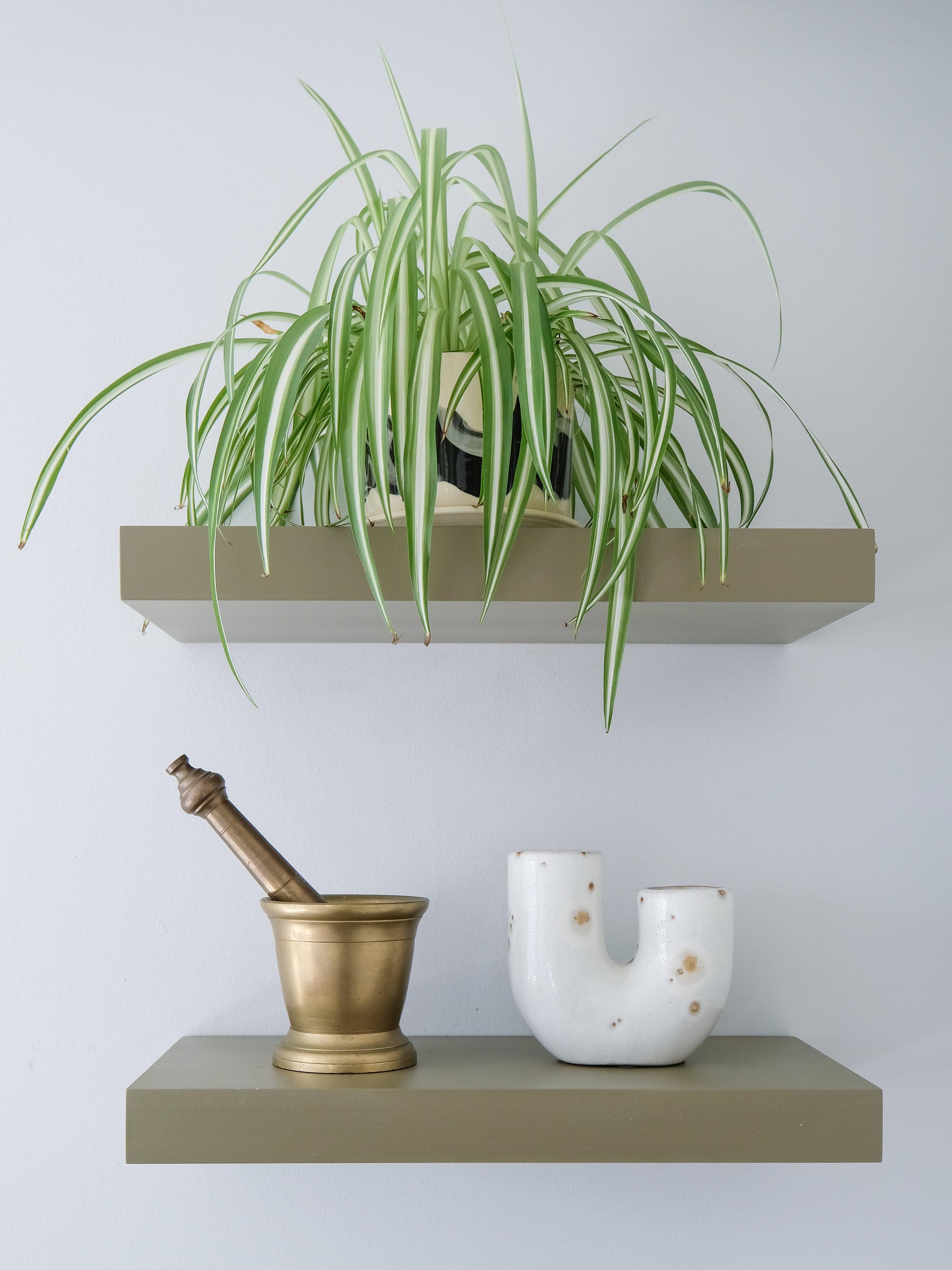 The UO Ikenbana vase is a new classic (also below).