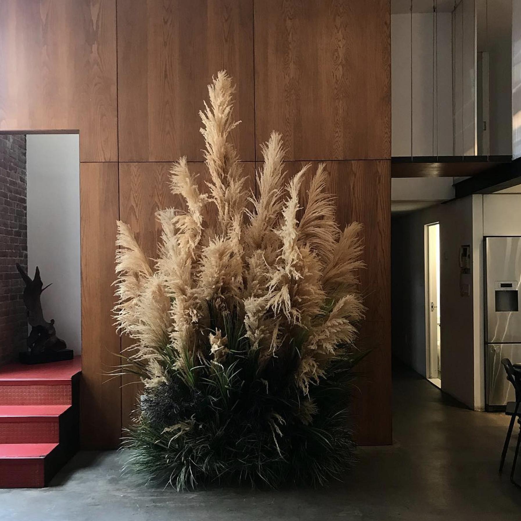 Source . Saffron BK always finds the best plant inspo.