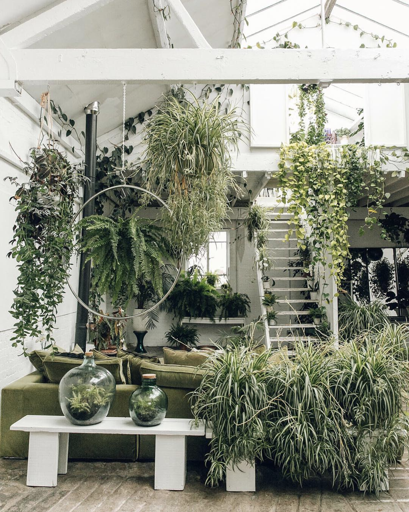 Source . When can I move in? #plantladydreamhome
