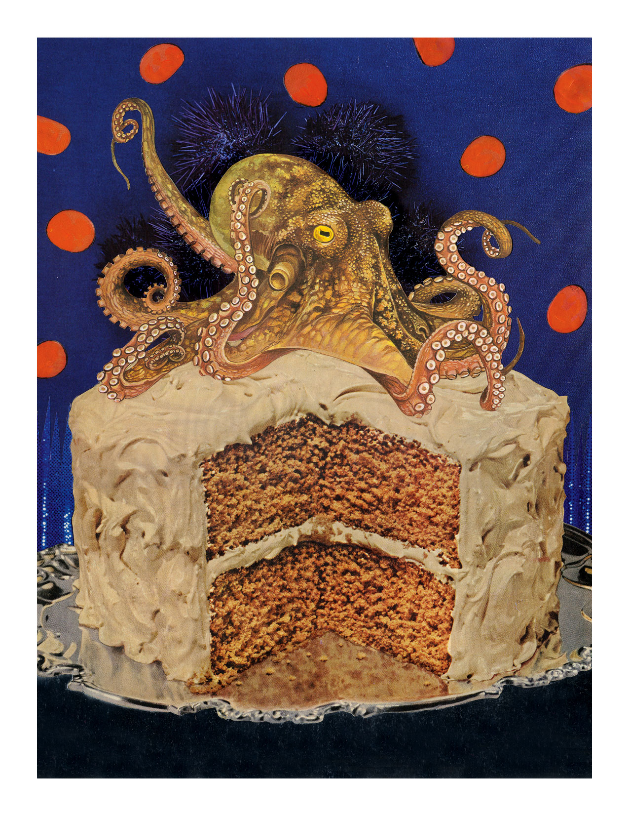 card-Octopus-Cakew.jpg