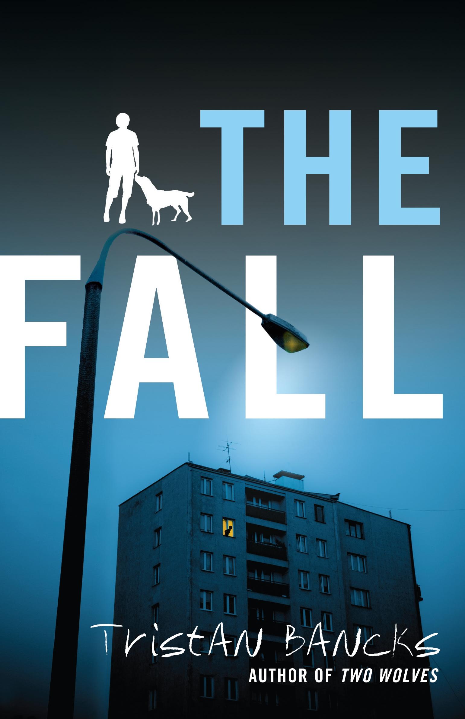 The Fall.jpg