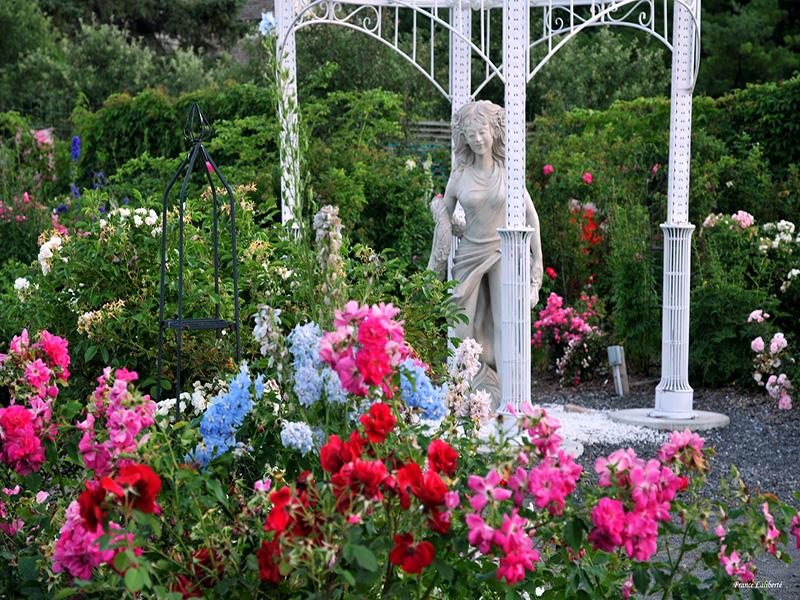 La roseraie ou jardin des amoureux