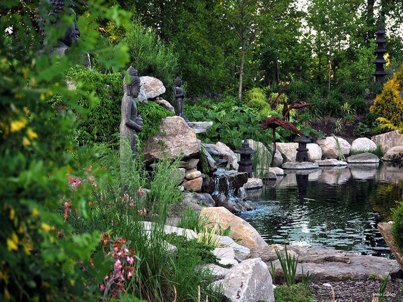Le jardin zen et son bassin d'eau