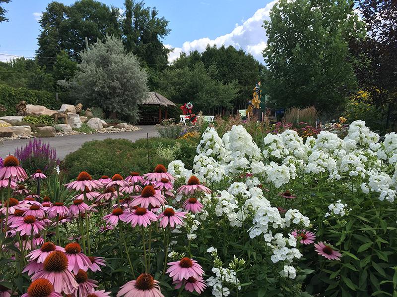 Le jardin côté cour