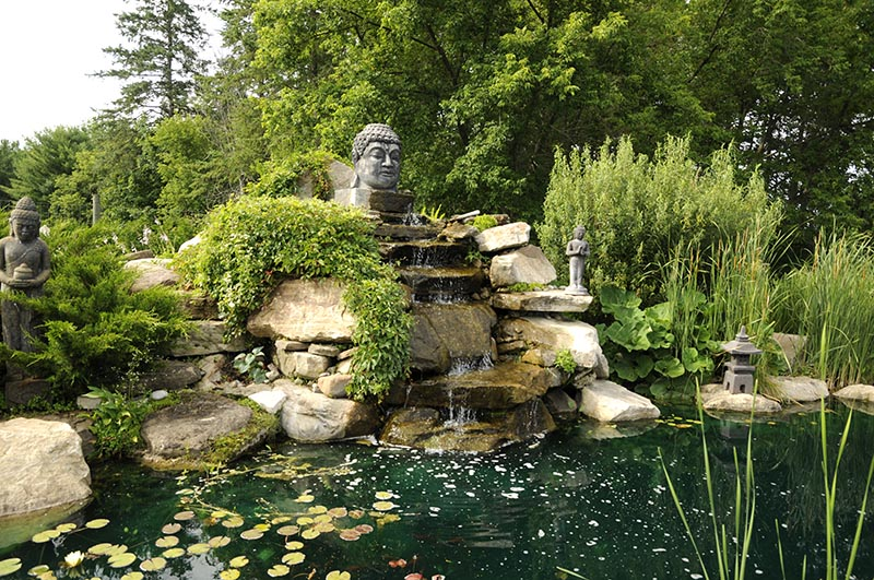 Le bassin du jardin zen, avec sa cascade et sa tête de bouddha en roche volcanique