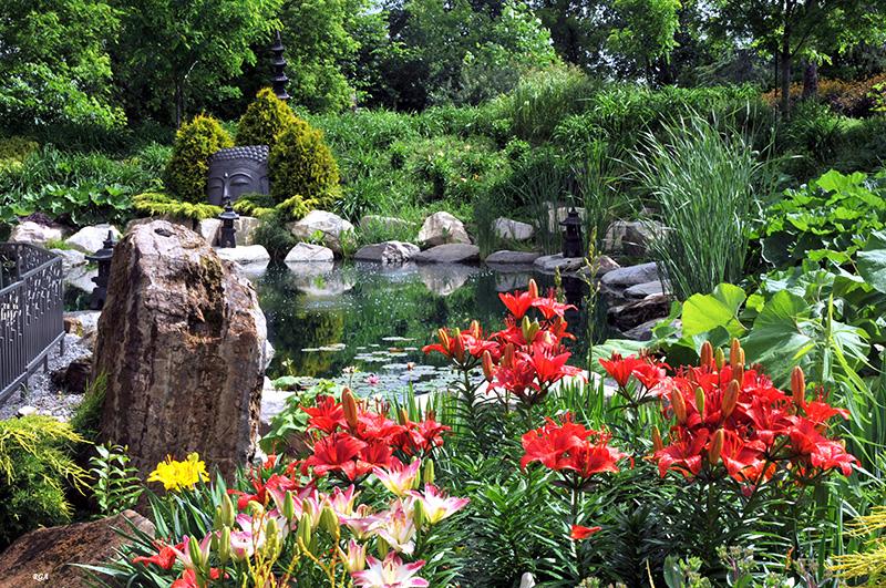 Montagne, pierre, eau, plantes (lys asiatiques)