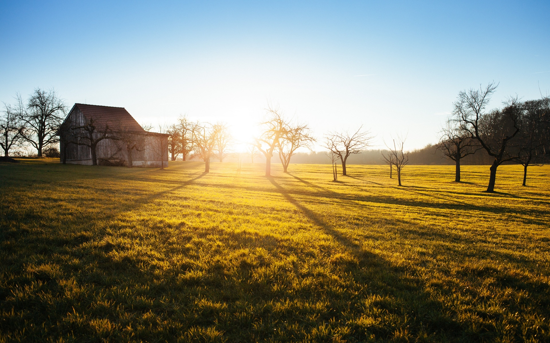 California Farm Sunset