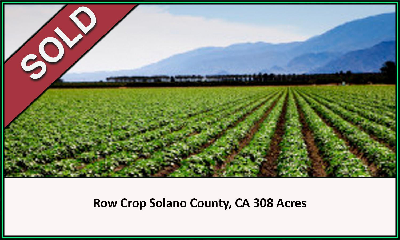 Row Crop Solano County Sold
