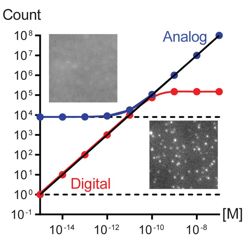 TOC Figure copy.jpg