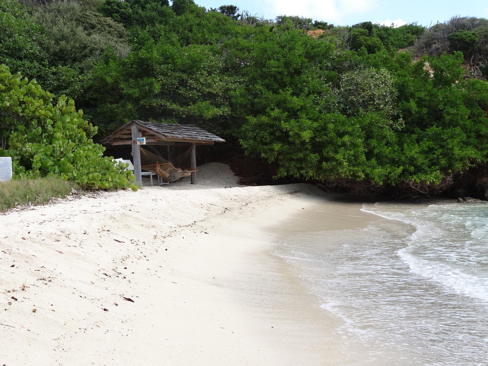 Beach Hammock #3