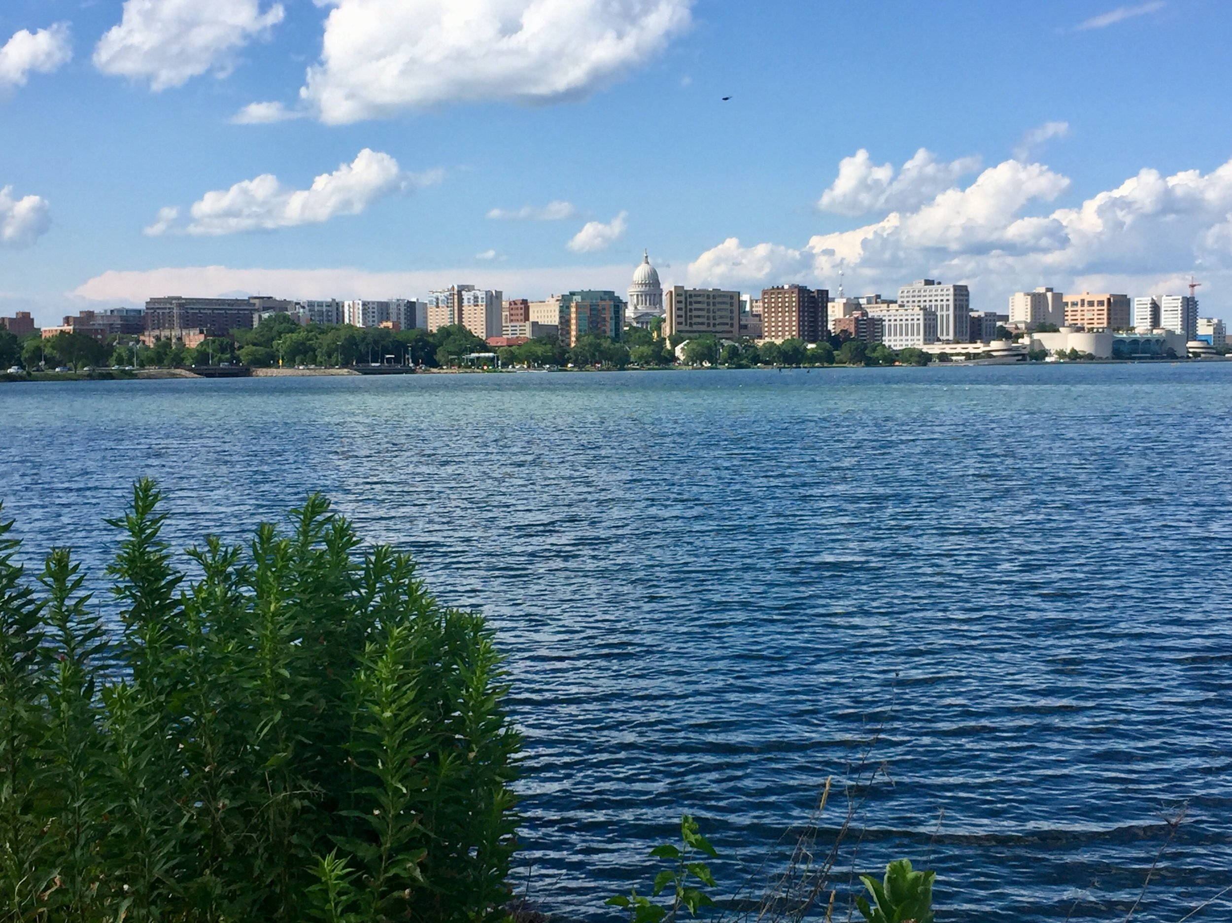 View of downtown Madison from the Lake Monona bike trail