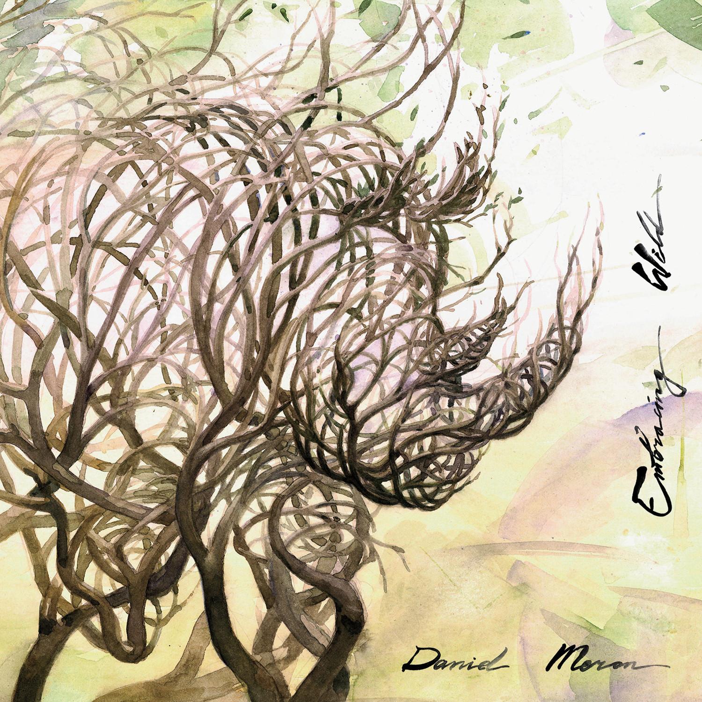 Daniel Meron - Embracing Wild