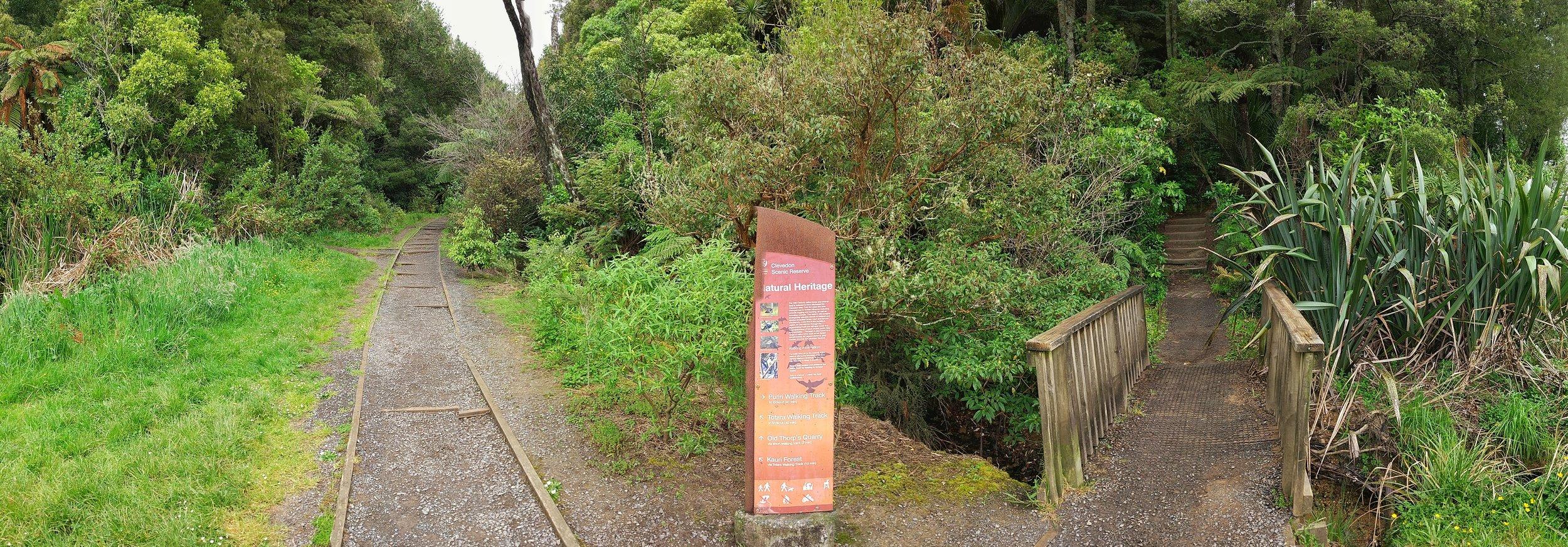 20171022_New_Zealand_Clevedon_scenic_reserve_base_path_pano.jpeg