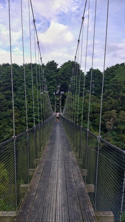 20171210_new_zealand_waikato_river_trails_hanging_bridge_1 (Small).jpeg