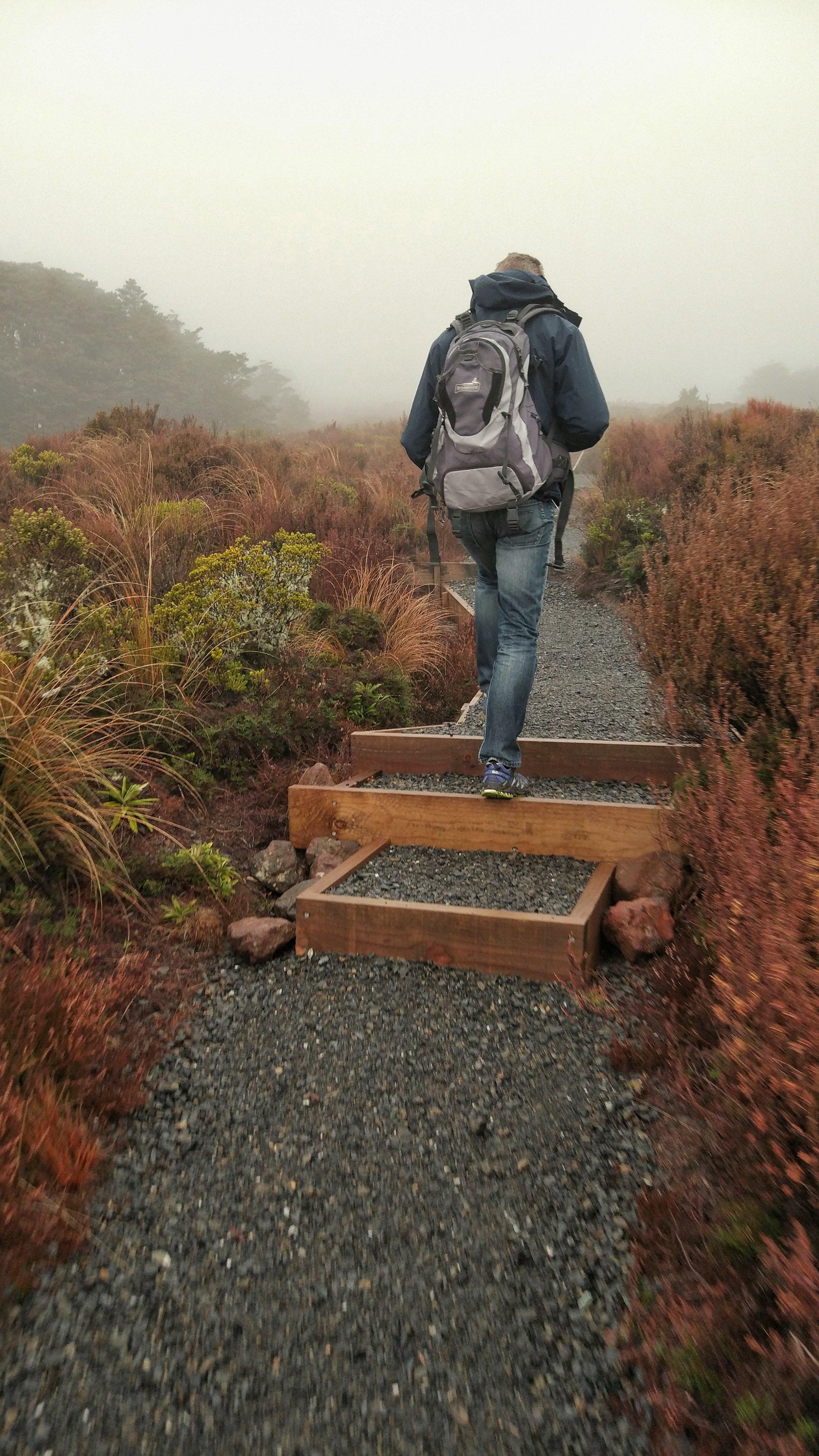 Bad weather, nice (short) walk