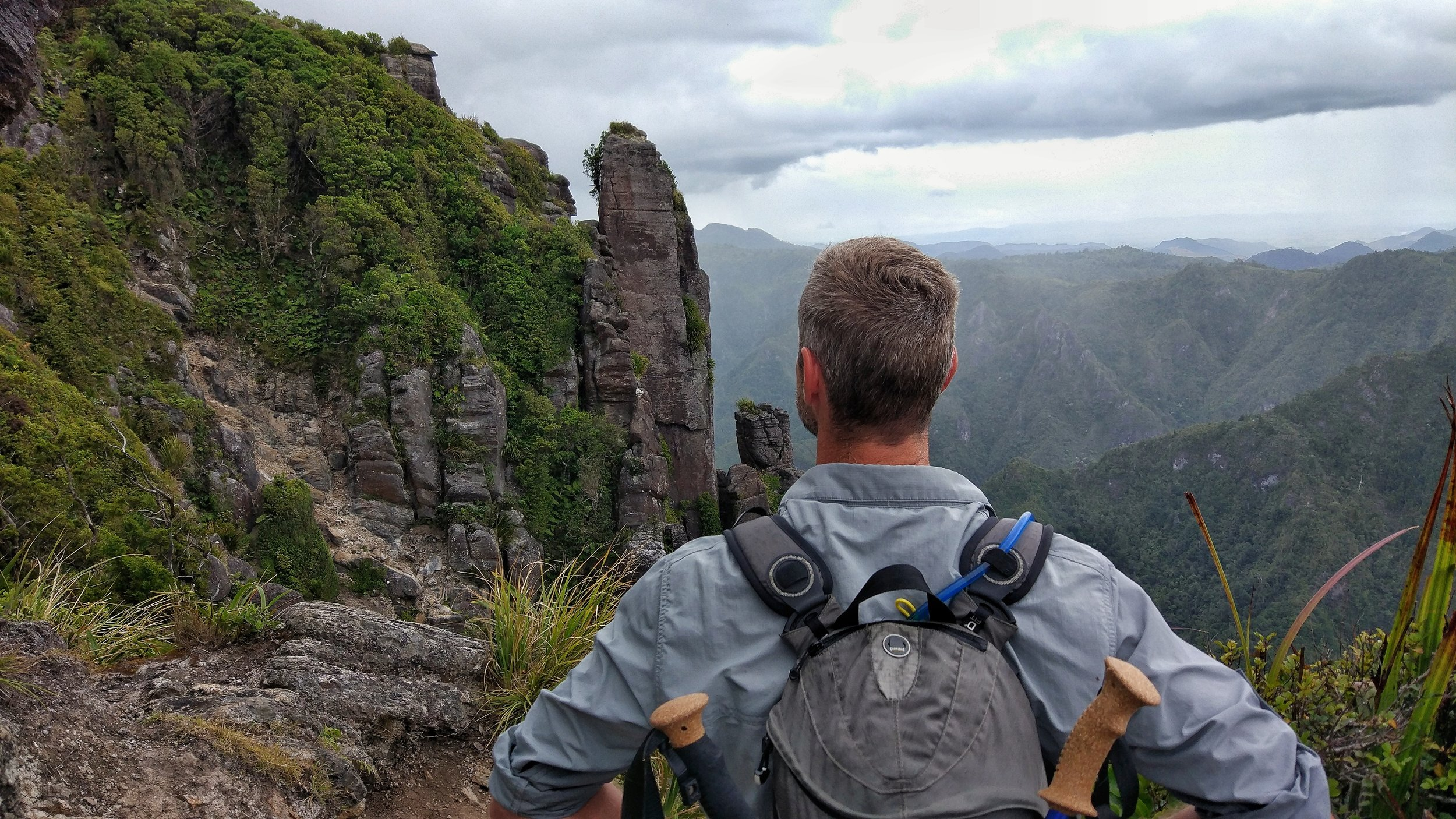 Hiking the Pinnacles Corormandel -