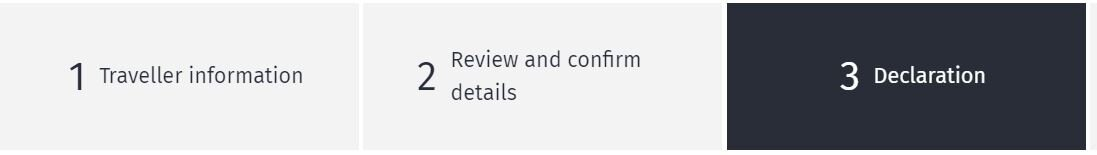 Step 6 and 7: review and confirm your details and click the boxes to declare that your answers are truthful and that you agree to the privacy statement