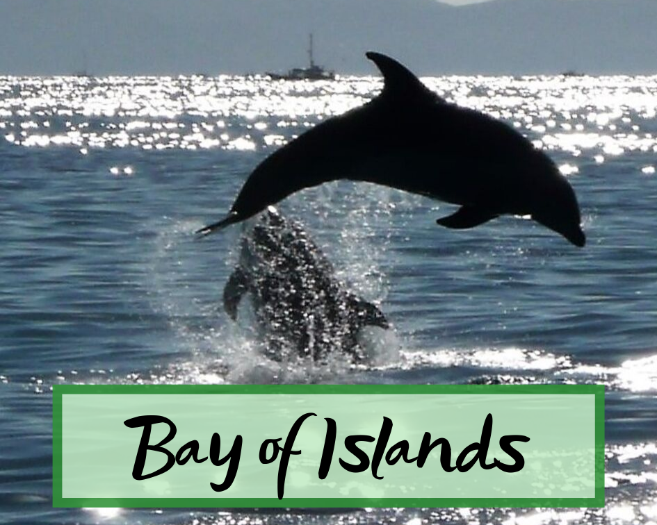 Bay of Islands New Zealand.png