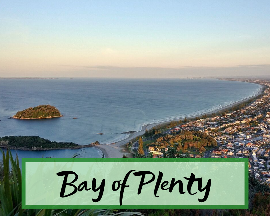 Bay of Plenty New Zealand.png