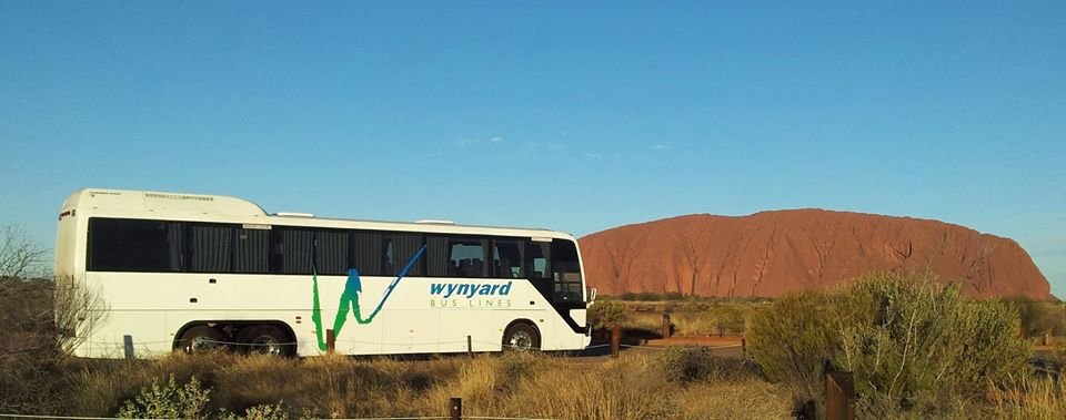 Wynyard Bus Lines Ularu.jpg