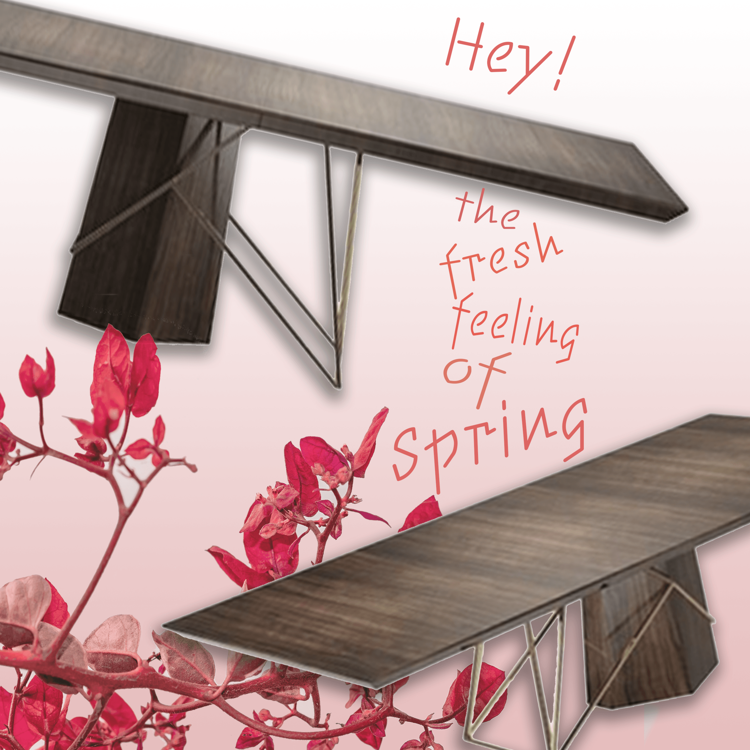 Spring  6-FB.png