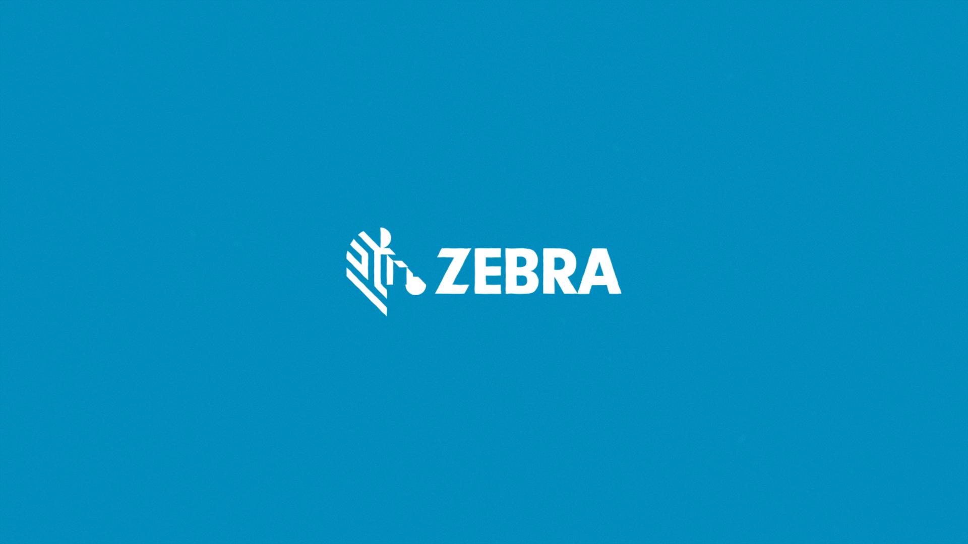 Zebra TAAP Case Film V007_DirectorsCut (0-00-01-23).png