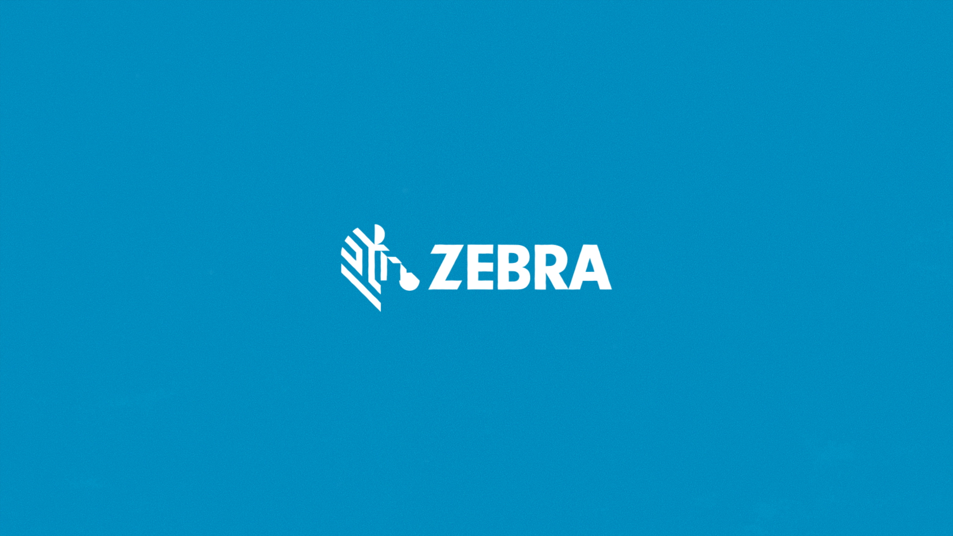 Zebra TAAP Case Film V007_DirectorsCut (0-03-43-13).png