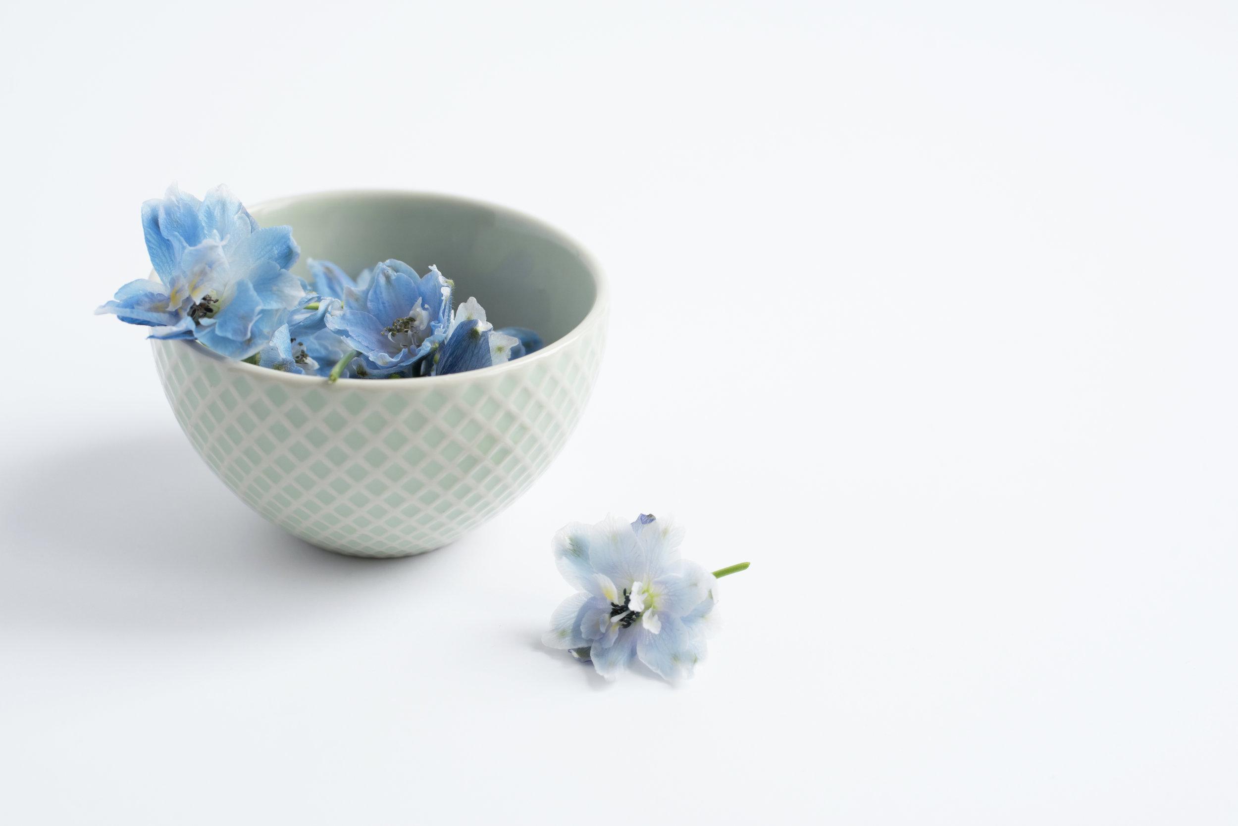 Blue+Ribbon+5.jpg