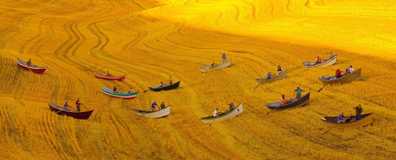 Boats-in-Wheatfield-Frederic-Ohringer-web.jpg