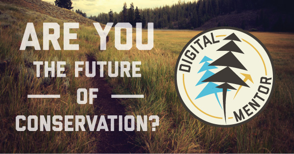 DM-Future.jpg