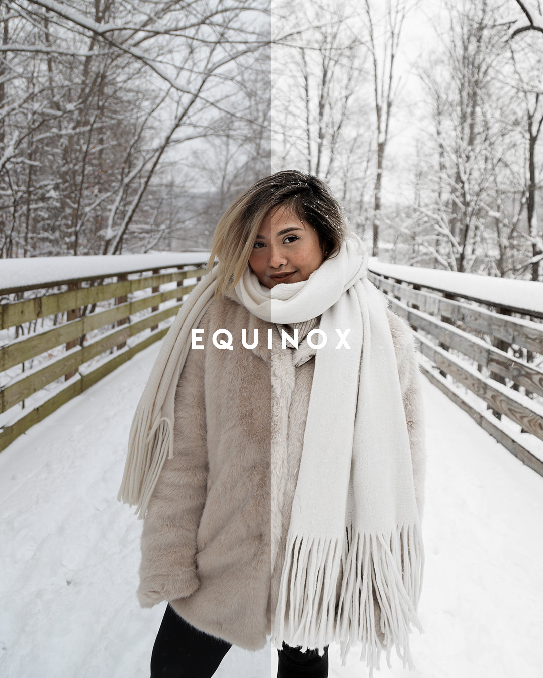 equinox1.png