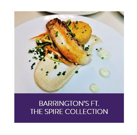 Barrington's.JPG