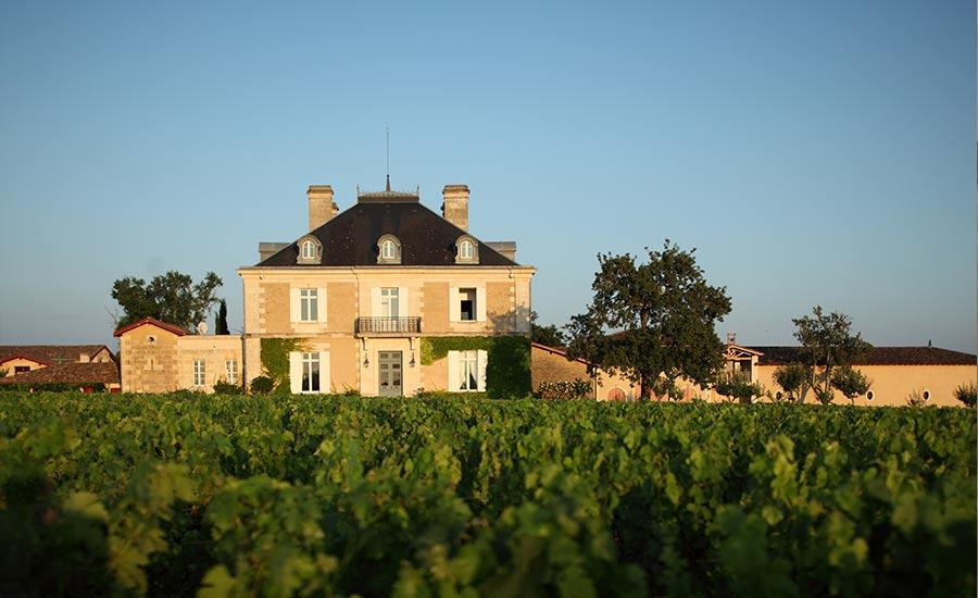 Chateau Haut Bailly.jpg