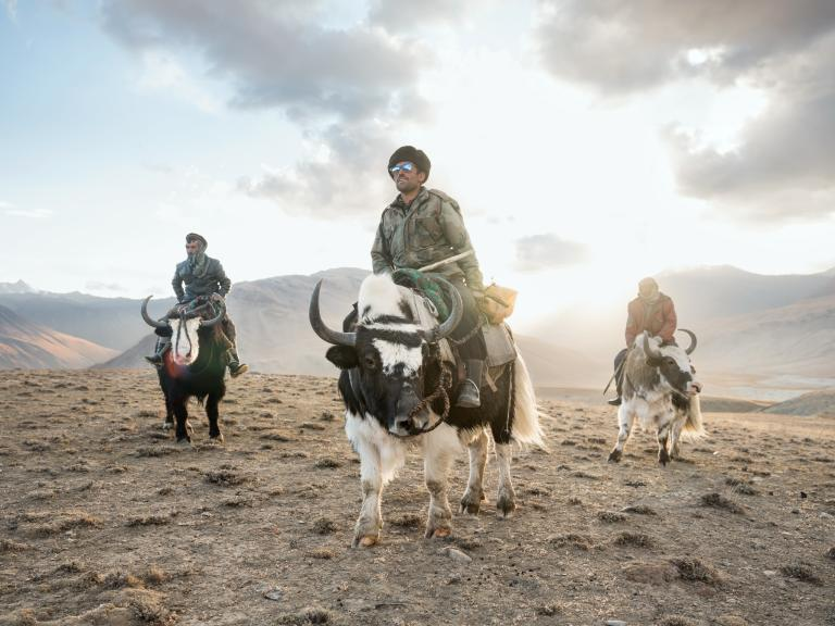 In the Wakhan corridor, Sidol (left), Jumagul (center), and Assan Khan (right) return on their yaks. by MATTHIEU PALEY