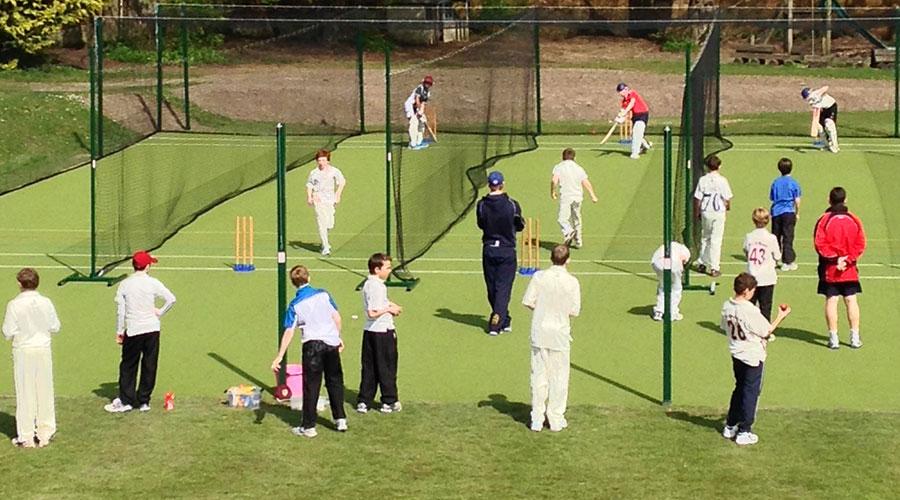 Cricket Artificial Grass -