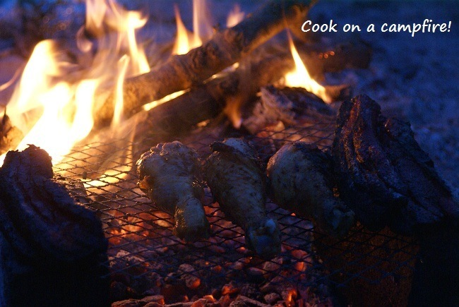 cookfirep.jpg