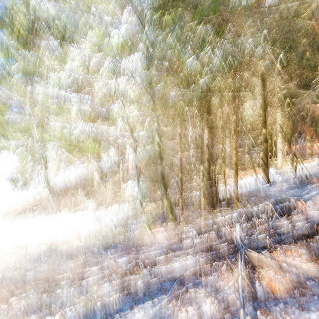 Great time working on a special project, in the woods covered with a thin layer of snow, in the Jura mountains of Neuchâtel! . . . . . #artisoninstagram #artisticphotography #capturedconcepts #conceptualphotography #emotive #featuremeofh #fineart #fineartist #fineartphoto #fineartphotographer #fineartphotography #fineartportrait #fineartprint #fineartprints #forbiddenart #l0tsabraids #marvelshot #of2humans #pixel_ig #visualcreators #visualsgang #visualsoflife #whyconcept #olivierfahrniphotographie