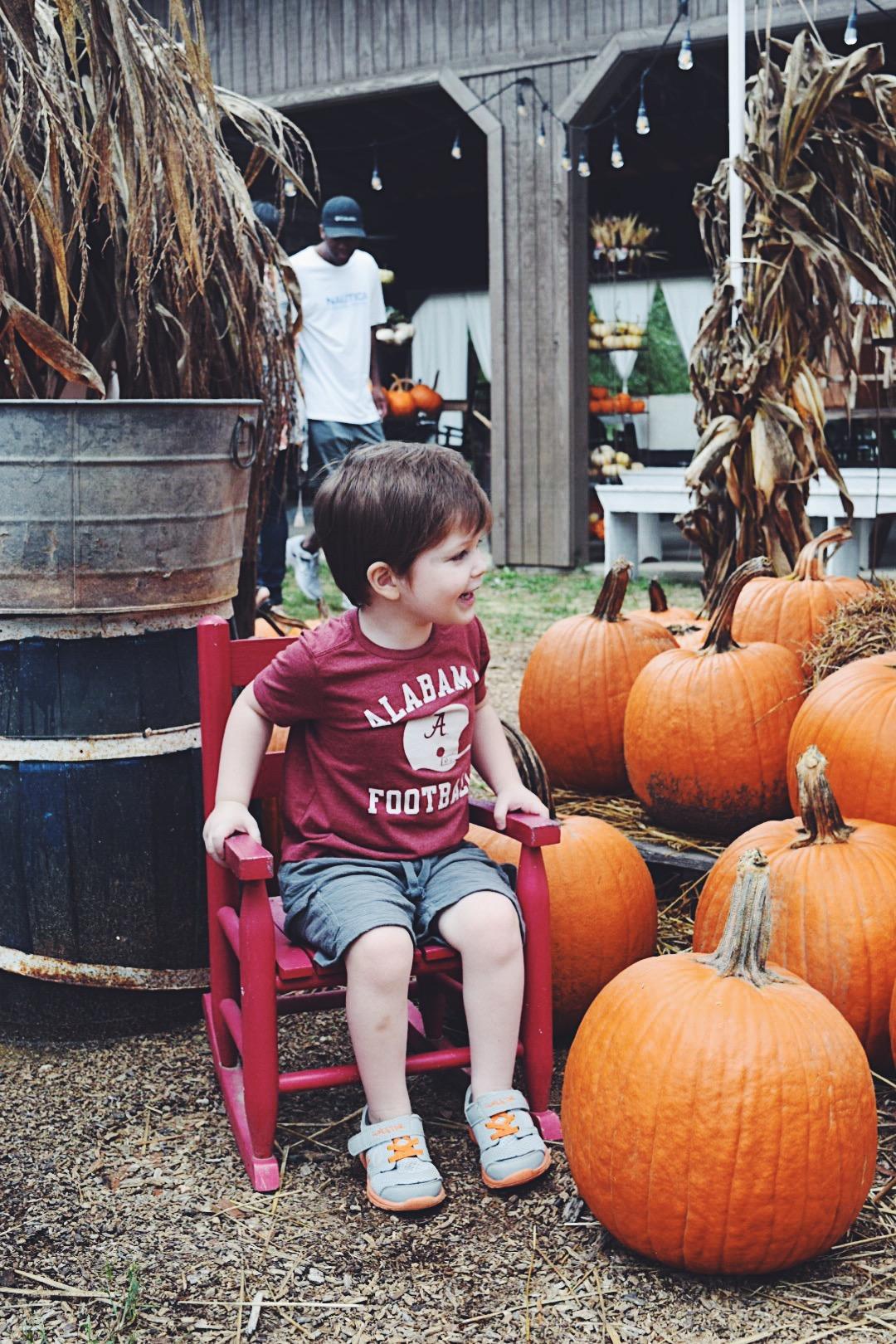 pumpkin4.jpg