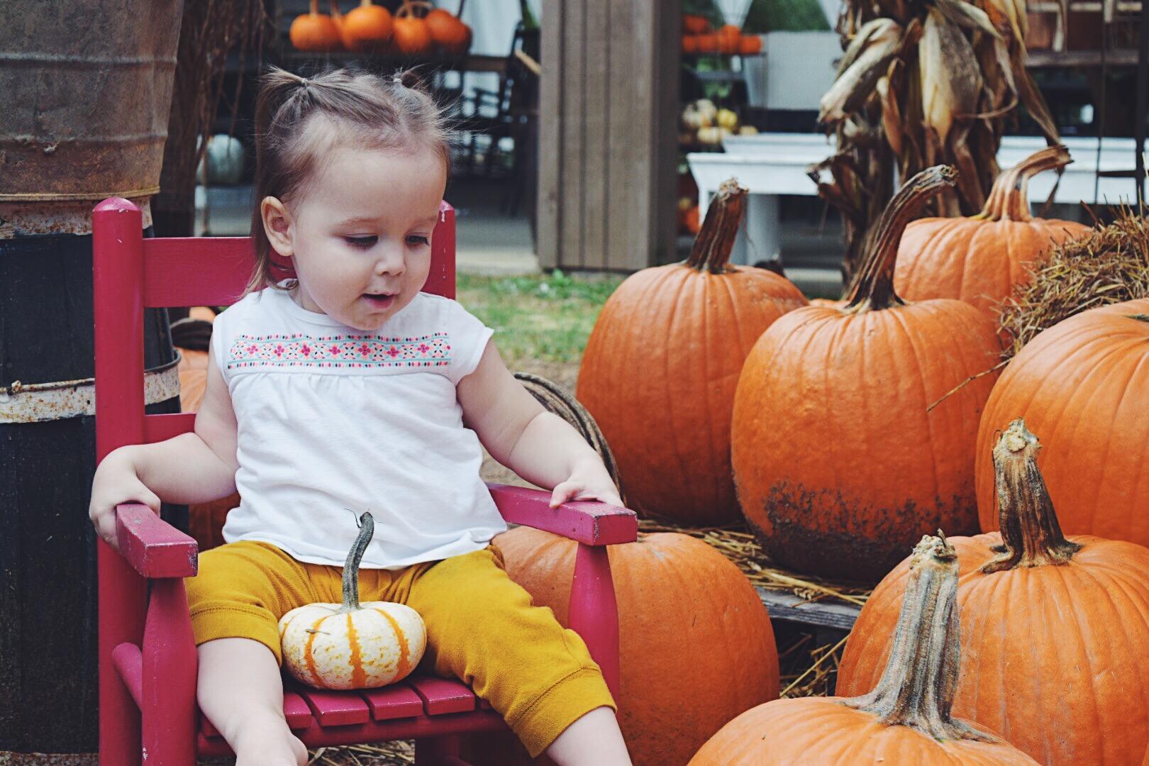 pumpkin9.jpg