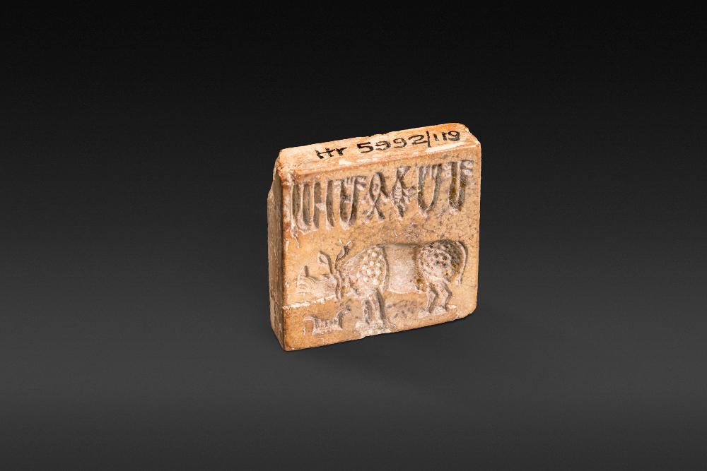 Rhino and 'script' - Steatite2700–2000 BCHarappa, Punjab, PakistanNational Museum, New Delhi