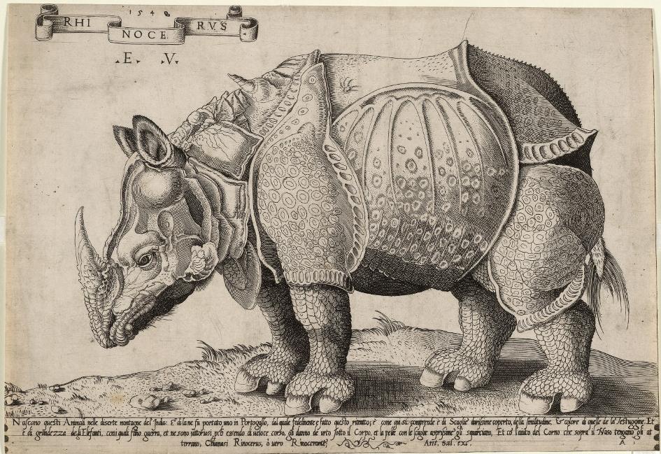 Rhinoceros, after Dürer - Engraving on paperAD 1548ItalyBritish MuseumThis is an image of a rhino that went by ship from India to Europe. Given by the Sultan of Gujarat as a gift to the Portuguese, it was the first rhinoceros to be seen in Europe since the end of the Roman Empire. Dürer created a print of the rhinoceros, on which this later copy is based, despite not having seen it. The animal was later sent as a gift to the Pope, but perished on its way.