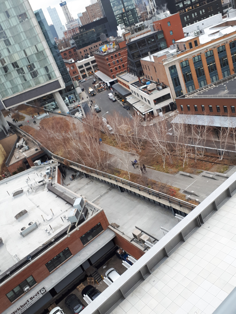 A view of New York City's Highline Park (using the defunct railway tracks - an fine example of landscape design that is stunning and people friendly. Photo taken from the third floor of the new Whitney Museum.