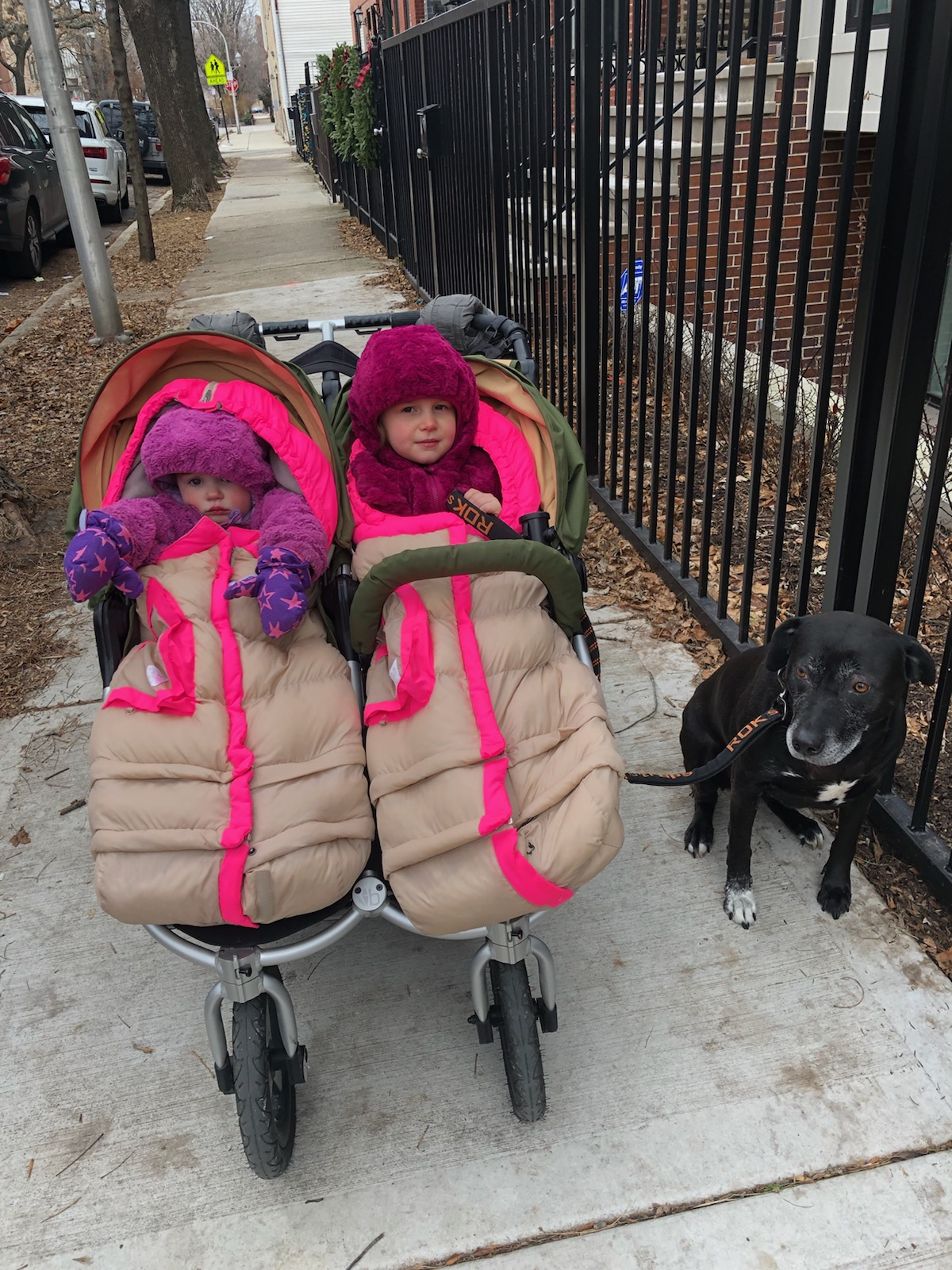 Tabby and Junie Alderman of Chicago slaying the Polar Vortex in their toddler boss 7Am Enfant Blankets. Putney, less than thrilled